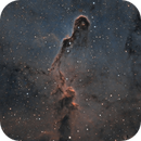 IC1396 SHO Crop,                                Tom Peter AKA Astrovetteman