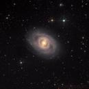 M95 - Deep Sky West Remote Observatory,                                Deep Sky West (Lloyd)