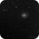 M101,                                Existentialist