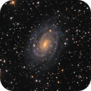 NGC 6384    A Barred Spiral Lurking in a Field of Stars,                                Kevin Morefield