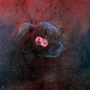 Bipolar emission nebula NGC6164/6165 in HaOiiiRGB,                                Rick Stevenson