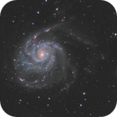 M101 and Friends,                                Andrew