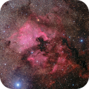 North America Nebula in wide field DSW Free Data,                                Yu-Peng Chan