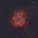 Rosette Nebula,                                Euripides