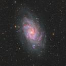 The H-alpha Regions of M33,                                Bart Delsaert