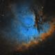Pacman Nebula in Cassiopeia,                                Steve Milne
