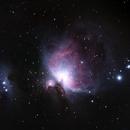 Orion Nebula,                                Callum Wingrove