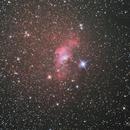 Bubble Nebula,                                Scott