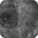 NGC 2244,                                Theodore Arampatzoglou