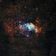 Bubble Nebula in Hubble Palette (NGC7635),                                Willem Jan Drijfhout