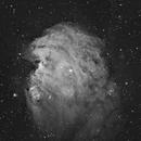 NGC 2174,                                Terry