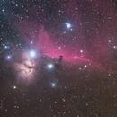 IC434,                                杨晓文