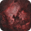 North American and Pelican Nebulae,                                Gabe Shaughnessy