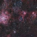 NGC 2070,                                Gerson Pinto