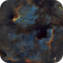 From Pelican to North America - IC 5070 NGC 7000 - a 28 panel mosaic in 115 hours,                                Piet Vanneste