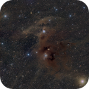 Molecular Clouds in Constellation Chameleon and Carina. Galaxy NGC3620, Reflection Nebulae IC2631, Ced110 and 111.,                                oldwexi