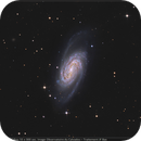 NGC 2903 with ASI 294 MC Pro,                                Jeffbax Velocicaptor