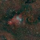 NGC2264,                                Jay Crawford