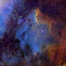 IC5067/70 Pelican Nebula; Cygnus,                                Thomas V. Davis