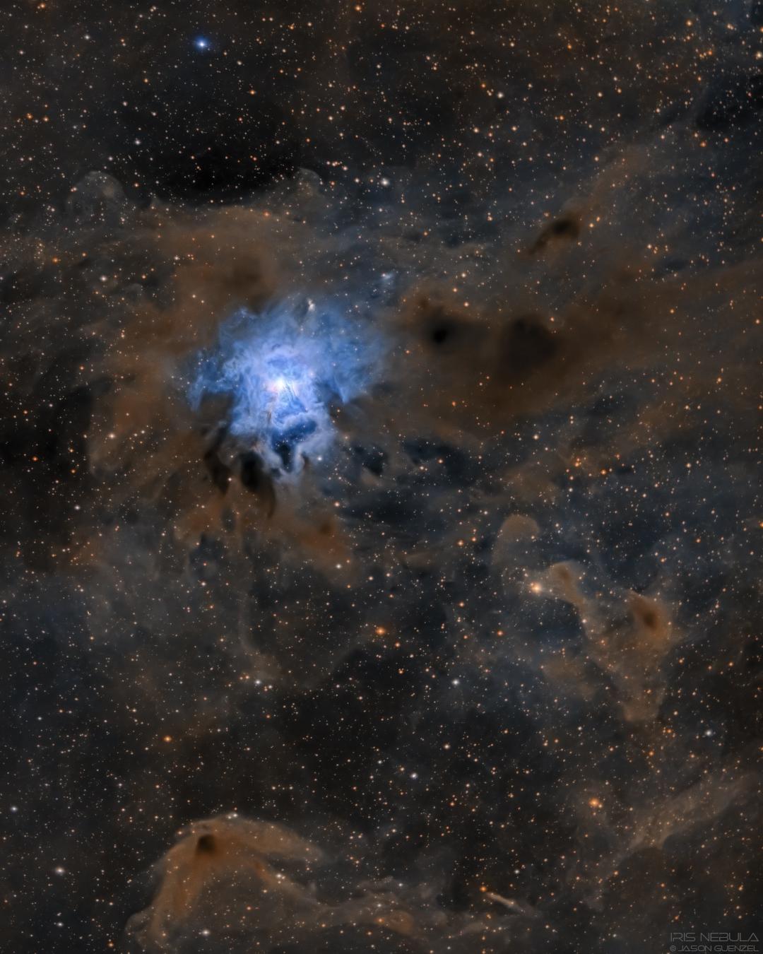 NGC7023 - The Iris Nebula,                                Jason Guenzel