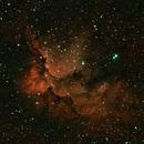 Wizard Nebula NGC 7380,                                walkman