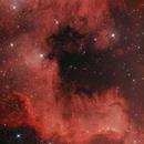 Gulf of Mexico  -  North America nebula  -  NGC 7000,                                deppski