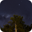 Milky Way, Jupiter and Saturn over the tree,                                Sofia Leite Fonseca