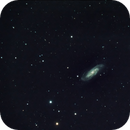 NGC 3198 and some distant friends,                                Mirko M