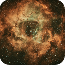 Rosette Nebula NGC2244,                                PROMETHEUS