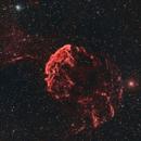 IC-443 - Jellyfish Nebula,                                Maximilian