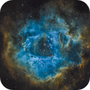NGC 2239: The Rosette in SHO,                                Glenn Diekmann