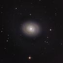 M94,                                jelisa