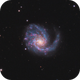 M99: The Virgo Cluster Pinwheel,                                Hunter Harling