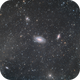 M81 M82,                                Andreotto