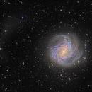 The Southern Pinwheel, M83,                                Rick Stevenson