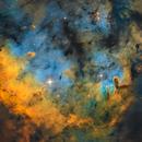 NGC7822 SHO,                                David A Pyle
