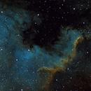 NGC 7000 ,                                Marcelo Domingues