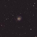 M101 Pinwheel Galaxy,                                Chris Nowland