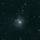 Iris Nebula,                                Jerry Brown