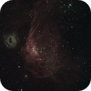 NGC 2020,                                Freestar8n