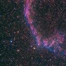IC1340,                                Kris Yang