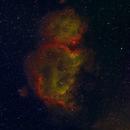 IC 1848,                                Miles Zhou