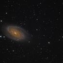 M81 & M82,                                Corrado Gamberoni