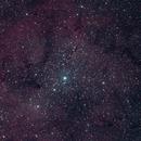 IC1396 and the Garnet star,                                Ian Dixon
