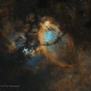 Fish Head Nebula (IC 1795) SHO,                                Jian Yuan Peng