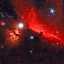 Barnard 33 - The Horsehead Nebula,                                StarSurfer Carl