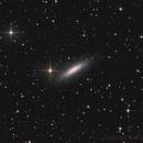NGC6503 Galaxy,                                Sascha Schueller