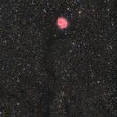 Cocoon Nebula,                                yatsze
