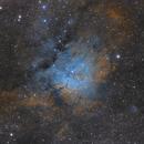 NGC6823 Hubble Palette,                                tonygl