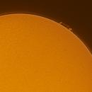Sun Prom 2021-01-24 11:11 ut H-Alpha,                                Sepp Käser